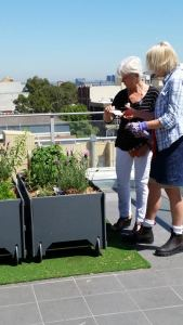 An edible garden at NSW Health Pathology has had a positive impact